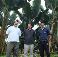 130919-equador4-banana-akiyama